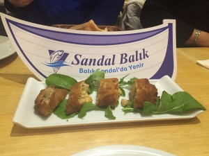 sandal balık