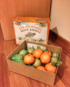 portakal bende